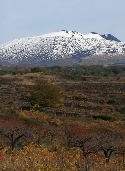 etna-in-cornice